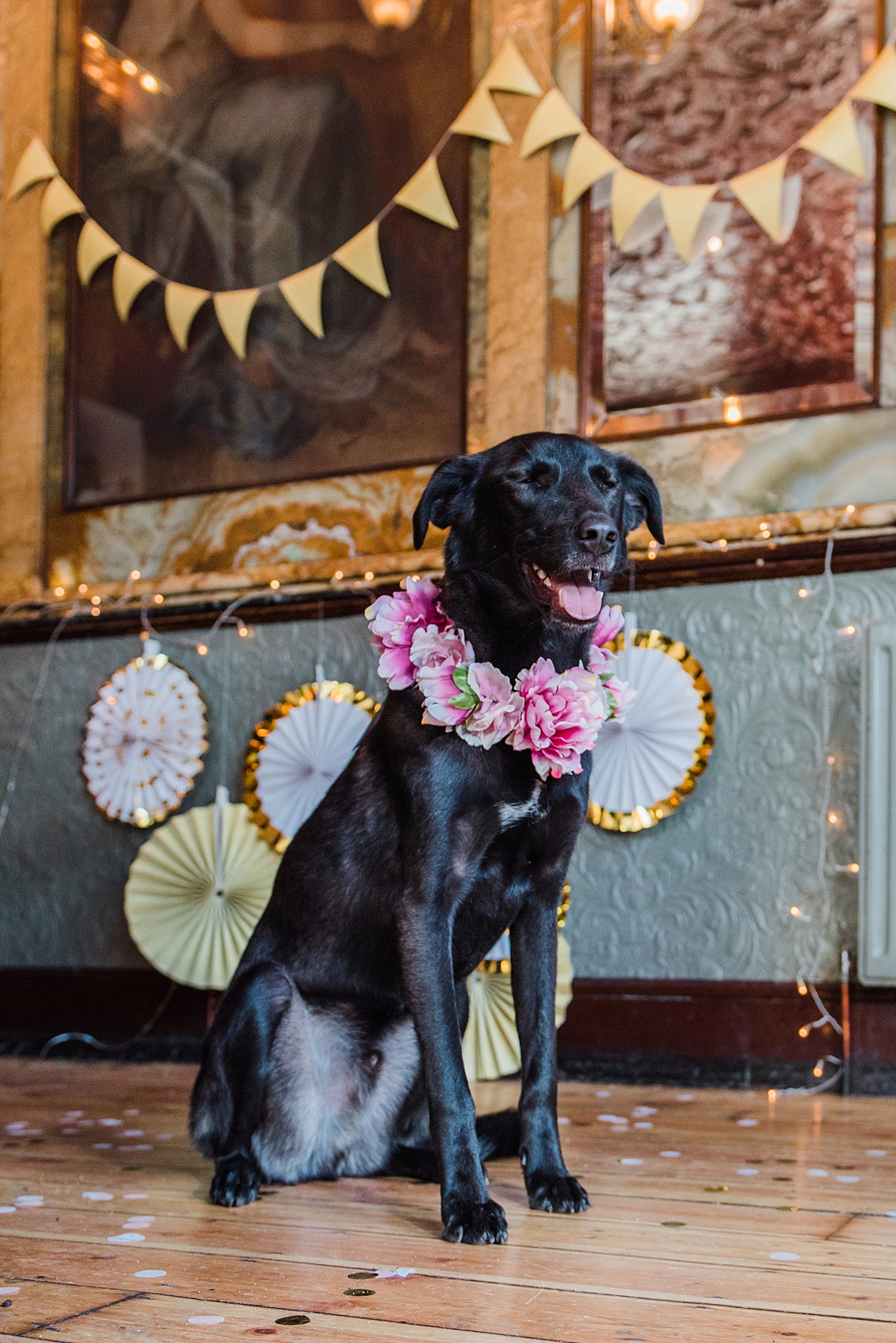 kai-pink-floral-collar-dogs-wedding-style-parrot-and-pinapple