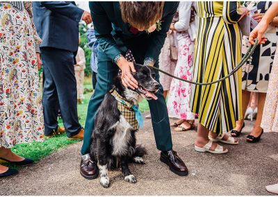 Dog-at-wedding-DIY-Home-Garden-Wedding-Parrot-and-Pineapple-Wedding-Photography