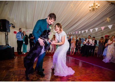 Dogs-on-the-dancefloor-DIY-Home-Garden-Wedding-Parrot-and-Pineapple-Wedding-Photography