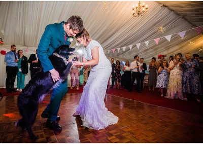 First-dance-with-family-dog-DIY-Home-Garden-Wedding-Parrot-and-Pineapple-Wedding-Photography