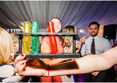 Test-Tube-Cocktails-DIY-Home-Garden-Wedding-Parrot-and-Pineapple-Wedding-Photography