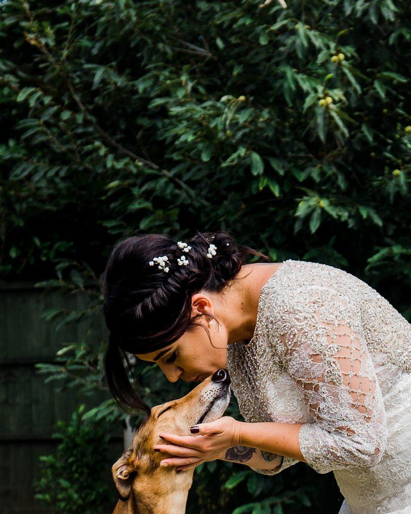 bride kisses greyhound dog friendly wedding