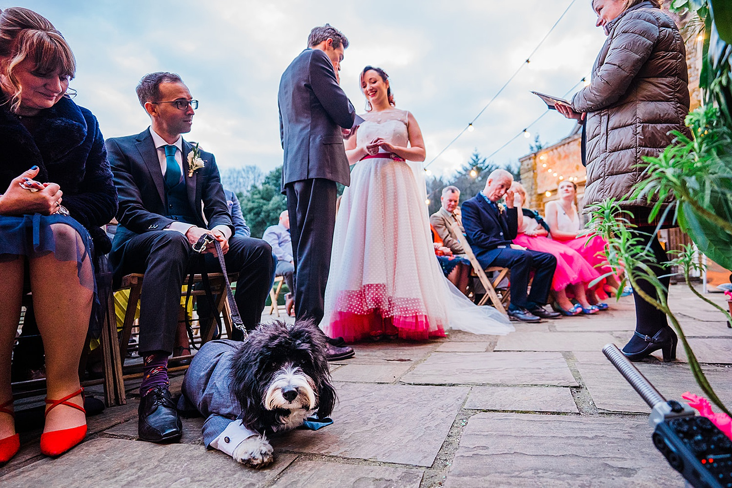 Dog at wedding ceremony Voewood wedding